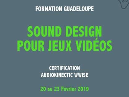 Grande première en Guadeloupe: Du sound Design pour jeux vidéos